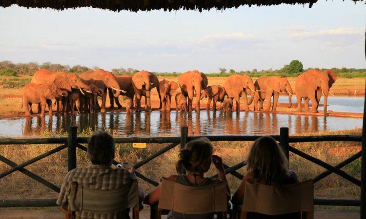Tsavo National Game Park